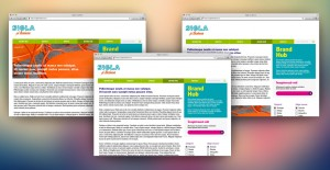 Design Site (10 pagini cu funcționalități standard)